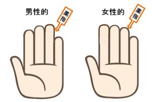 男性ホルモンの分泌に関係する薬指の長さ
